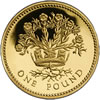 25th Anniversary £1 Gold Proof Flax Plant