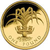 25th Anniversary £1 Gold Proof Leek