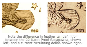 Sacagawea Dollar Tail Variations