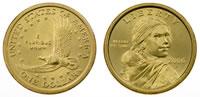 Sacagawea Golden Dollar coins