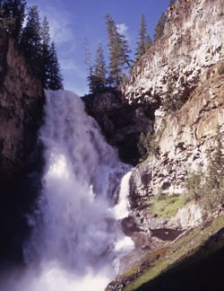 Yellowstone: Osprey Falls