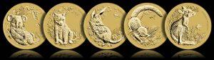 Bush Babies Coins