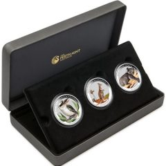 Kangaroo, Koala and Kookaburra Coins in Display Case