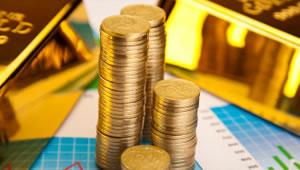 Gold Bullion Bars and Bullion Coins