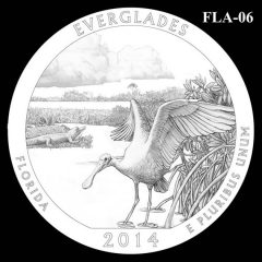 Everglades National Park - Quarter and Coin Design Candidate FLA-06