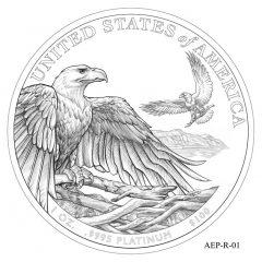 (AEP-01) 2013 American Platinum Eagle Design Candidate