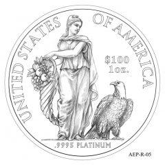 (AEP-05) 2013 American Platinum Eagle Design Candidate