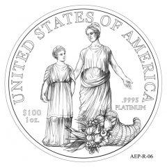(AEP-06) 2013 American Platinum Eagle Design Candidate