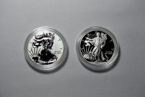 2013-W Reverse Proof and Enhanced Uncirculated American Silver Eagles - Obverses
