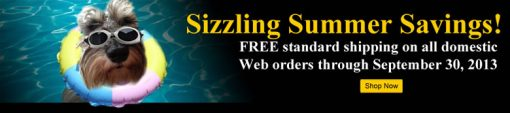 US Mint Banner Promoting Free Standard Shipping