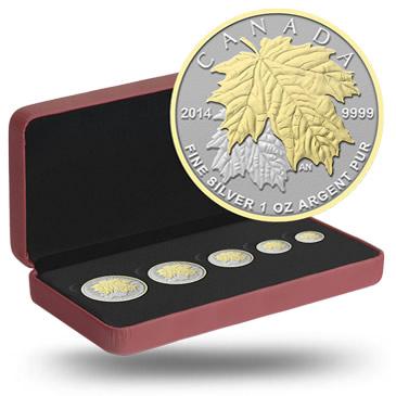 2014 Maple Leaf Silver Fractional Set