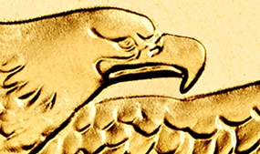 Section of American Gold Eagle Bullion Coin