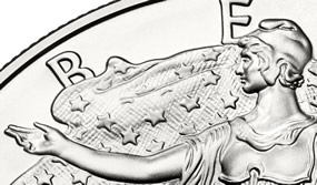 Section of American Silver Eagle Bullion Coin