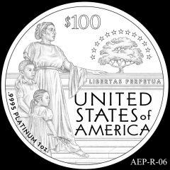 AEP-R-06 2014 American Platinum Eagle Design Candidate