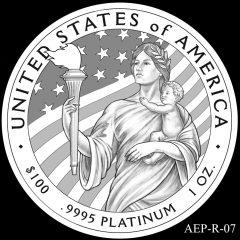 AEP-R-07 2014 American Platinum Eagle Design Candidate