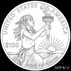 AEP-R-11 2014 American Platinum Eagle Design Candidate