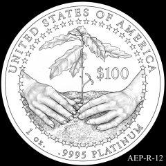 AEP-R-12 2014 American Platinum Eagle Design Candidate