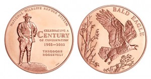 Bald Eagle bronze medal