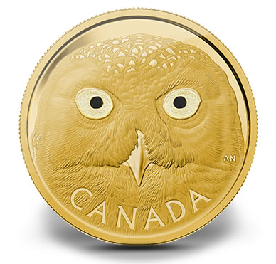 2014 Snowy Owl Gold Coin