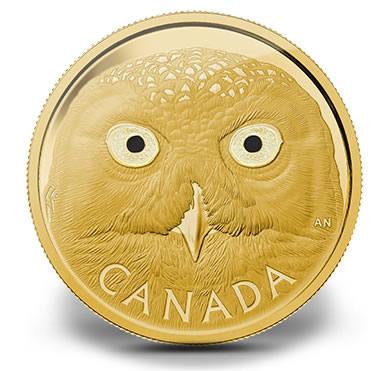 2014 Snowy Owl Gold Coin