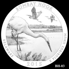Bombay Hook National Wildlife Refuge Quarter and Coin Design Candidate BH-03