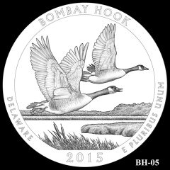 Bombay Hook National Wildlife Refuge Quarter and Coin Design Candidate BH-05
