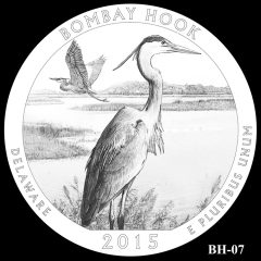 Bombay Hook National Wildlife Refuge Quarter and Coin Design Candidate BH-07