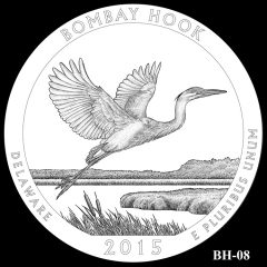 Bombay Hook National Wildlife Refuge Quarter and Coin Design Candidate BH-08