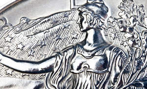 Close Up of Silver Eagle