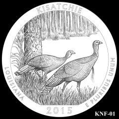 Kisatchie National Forest Quarter and Coin Design Candidate KNF-01