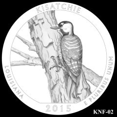 Kisatchie National Forest Quarter and Coin Design Candidate KNF-02