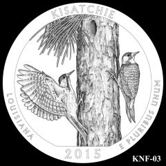 Kisatchie National Forest Quarter and Coin Design Candidate KNF-03