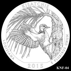 Kisatchie National Forest Quarter and Coin Design Candidate KNF-04