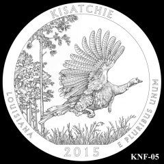 Kisatchie National Forest Quarter and Coin Design Candidate KNF-05