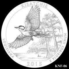 Kisatchie National Forest Quarter and Coin Design Candidate KNF-06