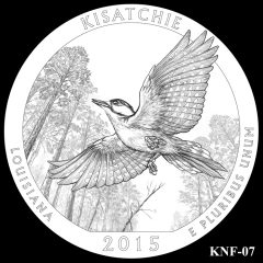 Kisatchie National Forest Quarter and Coin Design Candidate KNF-07