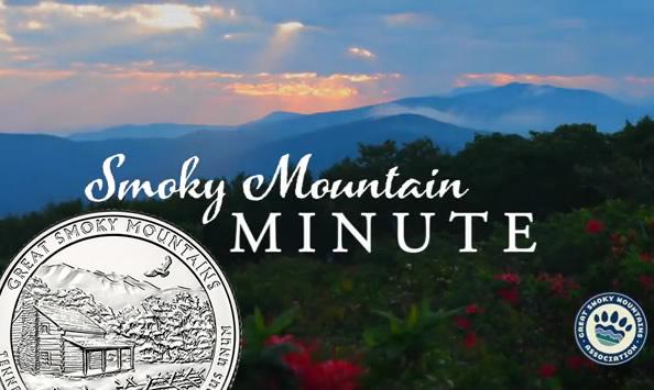 Smoky Mountains Scene and Quarter