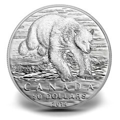 Canadian 2014 $50 Polar Bear Silver Coin for $50