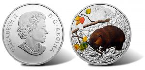 2014 Baby Beaver Coin Begins Canadian Baby Animal Series