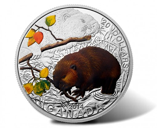 2014 Baby Beaver Coin - Reverse