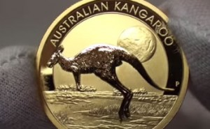 Perth Mint 2015 Australian Kangaroo Gold Bullion Coin