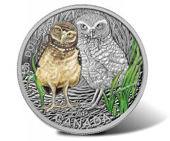 2015 Baby Burrowing Owl Coin 3rd in Canadian Baby Animal Series