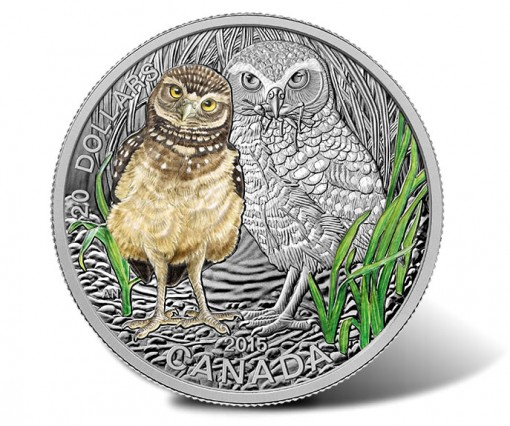 2015 $20 Baby Burrowing Owl 1 oz Fine Silver Coin