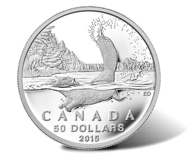 Canadian 2015 50 Beaver Silver Coin For 50 Coin News