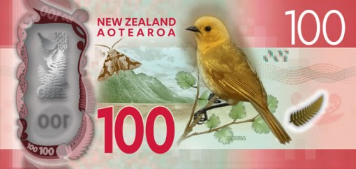 New Zealand $100 Note - Back