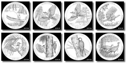 Design candidates for the Kisatchie National Forest Quarter