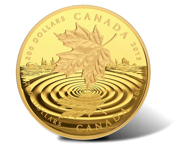 Maple Leaf Coins Capture Reflections