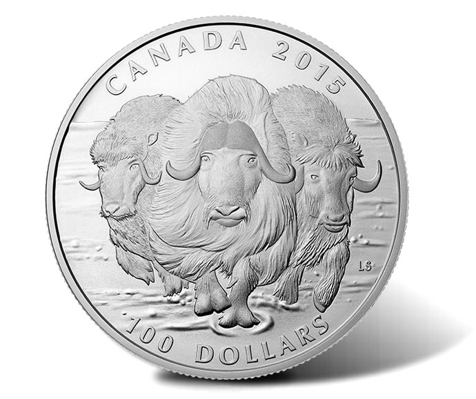 Canadian 2015 $100 Muskox Silver Coin