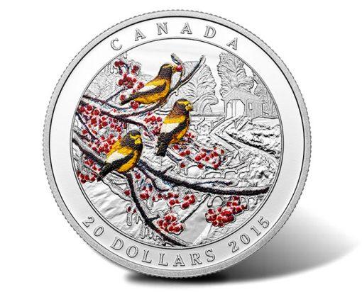 2015 Weather Phenomenon Winter Freeze Silver Coin
