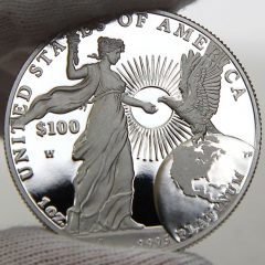 2015 Proof American Platinum Eagle, reverse-e